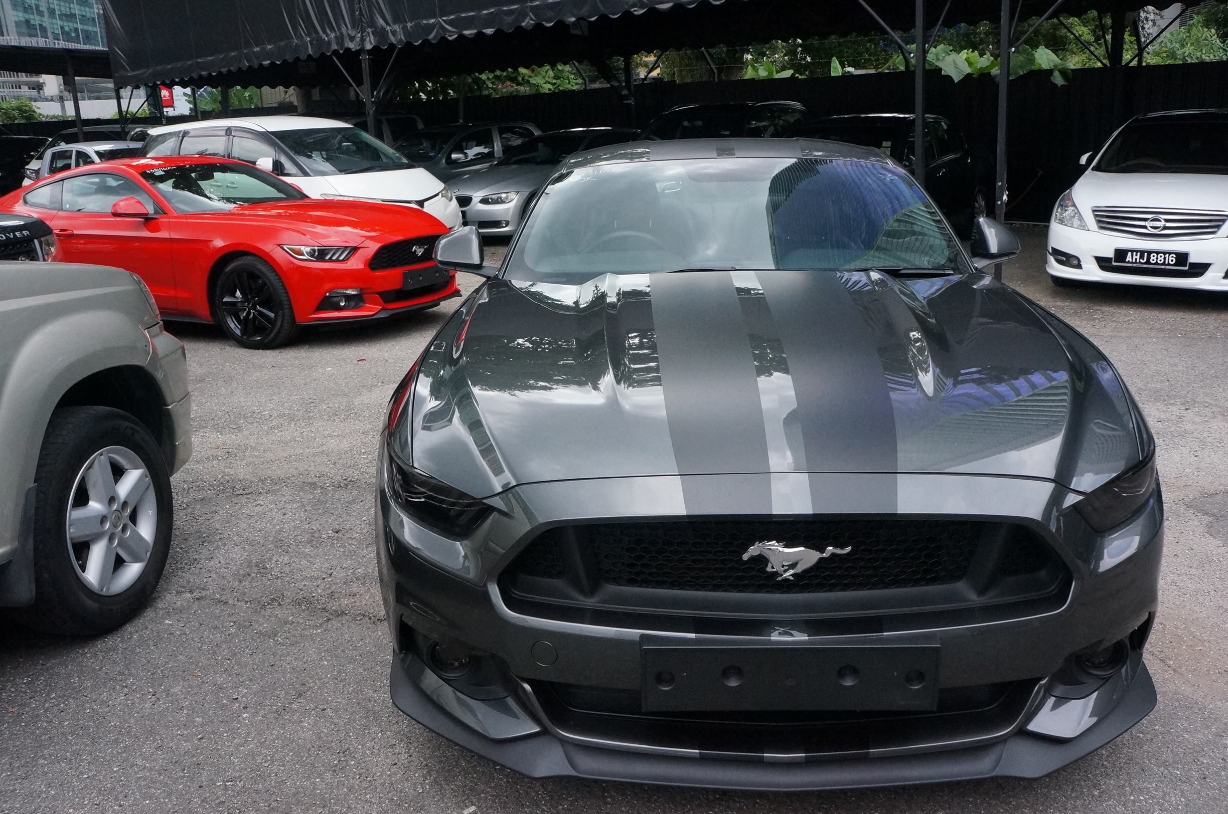 Ford mustang 2 3l ecoboost 2016 and ford mustang gt 5 0 v8 2016